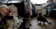 В Москве одобрили план Назарова о создании частных домов для престарелых