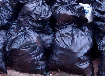 Омичи превратят бытовой мусор в новый газон для детского сада