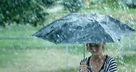 В Омск возвращаются дожди и похолодание