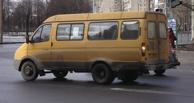 В Омске маршрутчик избил железной битой сразу двух пешеходов