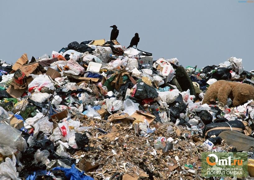 Омские власти наладят систему утилизации отходов