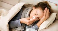 Стороженко заявил, что свиным гриппом в Омской области переболели 206 человек