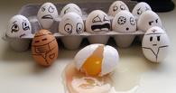 Под Омском на границе с Казахстаном задержали подозрительные яйца