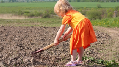 В Омской области заставляли бесплатно работать детей