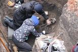 В Омске при реконструкции Музейной нашли скелеты возрастом 2,5 тысячи лет