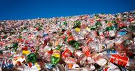 До конца года на Левобережье появится новый мусороперерабатывающий комплекс