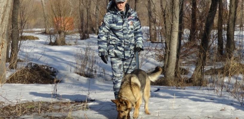 Омский пес по кличке Лютый раскрыл кражу кабеля с тягача