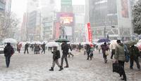 Жертвами снегопада в Японии стали 11 человек, более тысячи пострадали