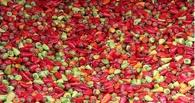 Россельхознадзор перекрыл поставки в Россию зараженного перца из Турции