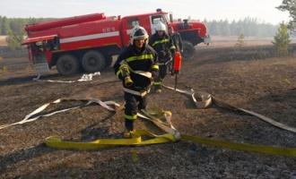 В 12 районах Омской области по-прежнему запрещено посещать леса