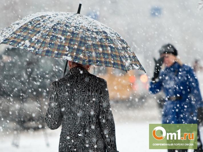 В Омске с 4 ноября ожидаются снегопады и похолодание