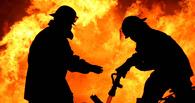 В Омской области в пожаре погибла 59-летняя женщина