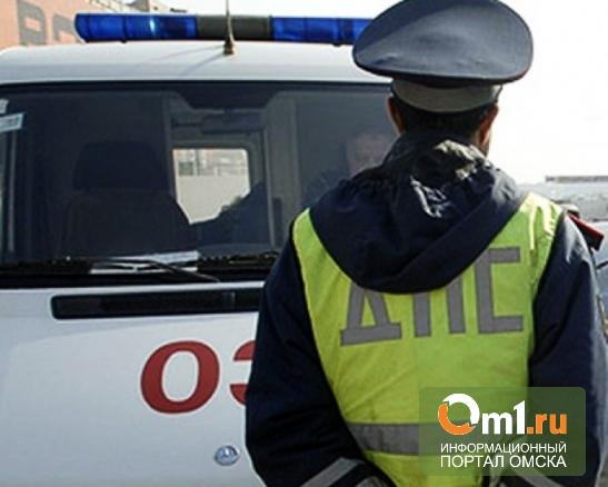 В Омской области водитель сбил пешехода и скрылся