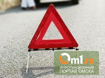 В Омске на Мельничной автобус проехался по пьяному пешеходу