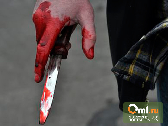 В Омске будут судить студента, убившего прохожего ножом в висок