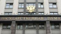 Противники «закона Димы Яковлева» пикетируют у здания Госдумы