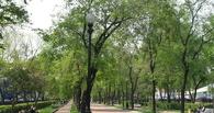 В Омске на улице 4-я линия к концу 2015 года появится новый бульвар