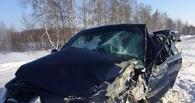 В ДТП с участием сына омского чиновника виновные пока не найдены.
