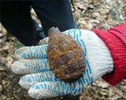 Жительница Омской области откопала на огороде боевую гранату