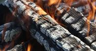В Омской области из-за печных дров загорелся дом: двое человек спасены