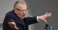 Жириновский пойдет первым: депутаты ЛДПР сдадут психологический тест