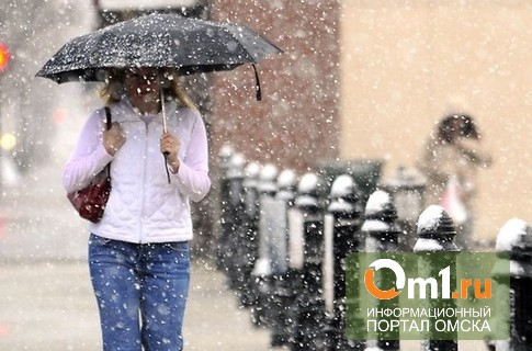 После теплых выходных Омск накроет мокрым снегом