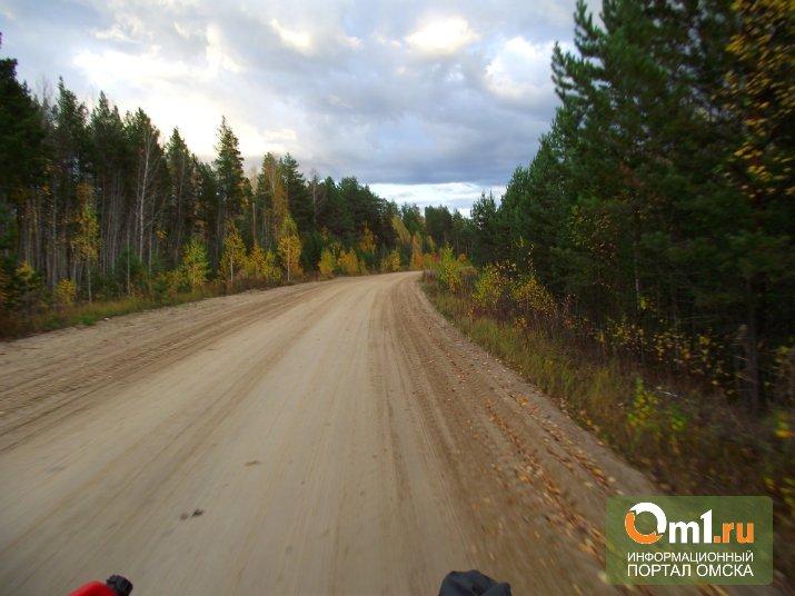 В Омской области на дорогу к «Муромцевской ривьере» потратят 100 млн рублей