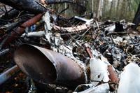 Рухнувший в России самолет Ан-2 могли заправить простым бензином?
