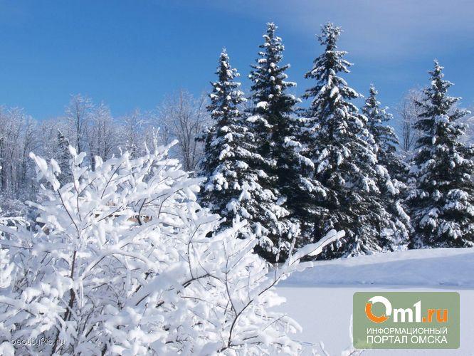 Морозы с севера Омской области переходят на юг