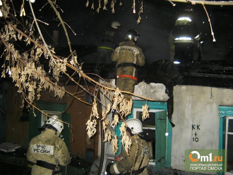 В центре Омска на пожаре погибли две женщины