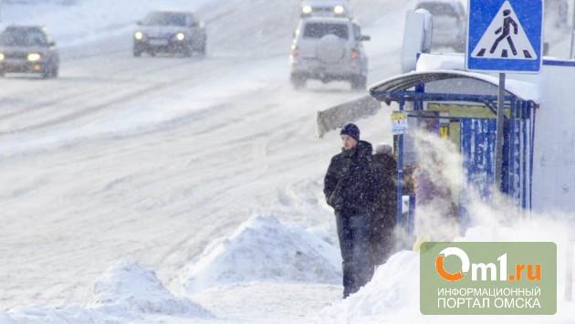 За дорогами в Омске будет следить департамент общественной безопасности