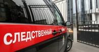В Омске школьник вместе с рецидивистом врывался в чужие дома