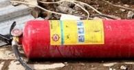 На пожаре в Омской области погибла 8-летняя девочка