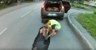 Движение «дорожных фей» перешагнуло пределы Омска