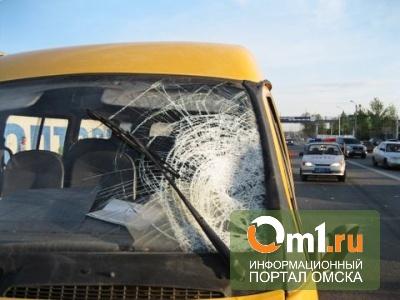 В Омске на Красноярском тракте погиб пешеход