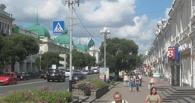 Деревья на Любинском проспекте сохранят при реконструкции