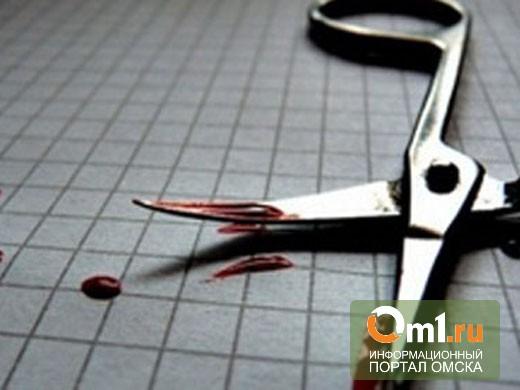 В Омске пенсионер ножницами убил одного мужчину и покалечил другого
