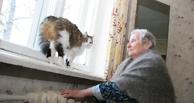 В Омской области 180 домов были незаконно отключены от теплоснабжения