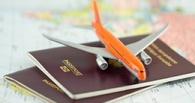 Чтобы вылететь за границу, омичка отдала долг в 2 млн рублей