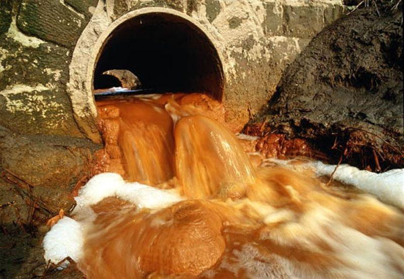 «Чистый город» сбрасывал в Иртыш сточные воды в Омской области