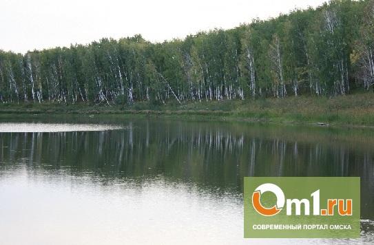 На Амринской балке в Омской области утонул человек