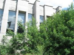 Кокорин сделает в здании ДК «Рубин» кинотеатр на 4 зала