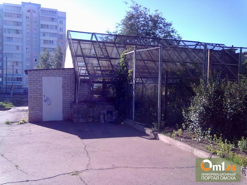 Мэрия будет сносить бассейны и теплицы в омских школах