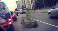 Дорожная реинкарнация: провал на Масленникова, который недавно закатали, снова проявил себя