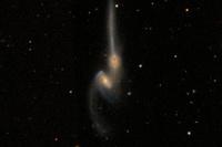Астрономы-самоучки поучаствовали в составлении полного каталога галактик