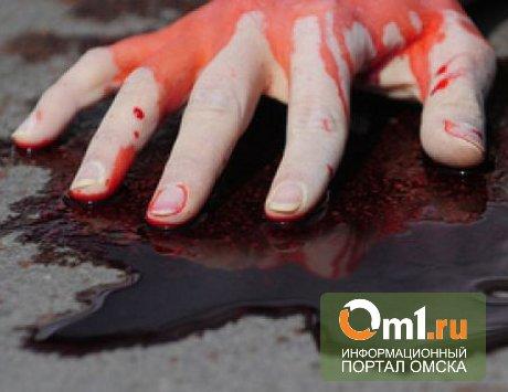 В Омске на Путилова мужчина убил сожительницу и ее брата