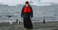 Антарктида, патриарх, пингвины... Глава РПЦ погулял с полярниками и местной фауной