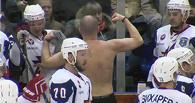 В ВХЛ произошла массовая драка с участием главных тренеров