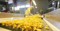 На пальмовое масло, чипсы и газировку: в России введут налог на вредные продукты