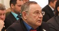 В Омске бизнесмен Кокорин построит детскую школу парусного спорта и центр единоборств